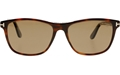 TOM FORD NICOLO 02 FT0629 52H DARK HAVANA WAYFARER WITH BROWN POLARIZED LENSES