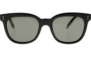 Victoria Beckham The VB BLACK VBS94 C09 WOMENS CLASSIC WAYFARER STYLE WITH GOLD SIDE DETAILING AND GREY ZEISS LENSES