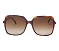 gucci-gg0544s-002-havana-brown-gradient-butterfly-sunglasses